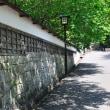 漆喰の白塀と新緑はとても似合いますよね。 (Photo No.14314)