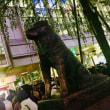 茅野市移住促進プロモーションを渋谷モンベルで頑張る。