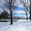 雪に覆われた常願寺川公園・・・立山町