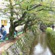 1072             雨上りの大文字山   2017.10.18(水) 曇り