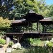 東本願寺飛地境内地 渉成園「蘆庵」の特別公開見学