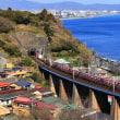 玉川橋梁を行くEF66 100番台牽引貨物列車