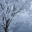 春分の碓氷湖
