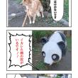 四コマ写真(テスト)