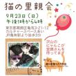 9月23日 猫の里親会のお知らせ