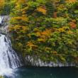 秋色の法体の滝
