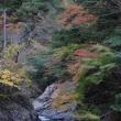 浜松市天竜区春野町明神峡・米滝(?)
