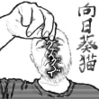 ■GIMP(9)向日葵猫・四