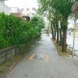 台風の目  台風24号