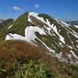 シャクナゲと残雪の山 続編