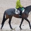 【ドゥオーモ】栗東トレセン帰厩、復帰戦の目安は3月後半?