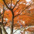 三峯神社✨