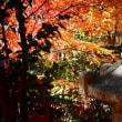 『紅葉狩り』 旧吉田茂邸(2)