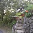 生駒山越えて帰宅、21.383 歩