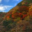 12月3日  錦秋の山