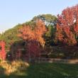 とりあえず、『春日公園』を散歩・・・ Walking around Kasuga Park......