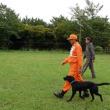 NPO災害救助犬ネットワーク認定試験