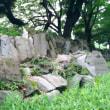 東京日比谷・かごしま遊楽館に行ってみる