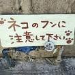 【りんくる食堂】