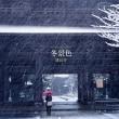 冬景色【鶴岡八幡宮・他】雪景色の鎌倉スケッチ