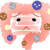 夏の不調を 『腸』 から解決!!