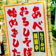 「茨城県 県知事選挙 良心宣言 2017」
