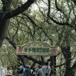 旧関宿町(野田市)の隣町、幸手の『曼珠沙華まつり』に行って来ました