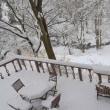 大雪も屋根から落ちる八ヶ岳ブルーの日、まだ大雪の名残見る午後の森。