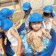 8月8日うさぎぐみ:水遊び