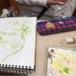 秋の大人のお絵描き教室