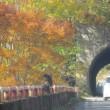 奥胎内自然の紅葉