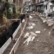 高瀬川2019冬の記録