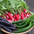 暑い中、野菜の収穫です