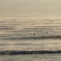 プチ漂流 1月4日の木崎浜(2019)