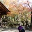室生寺の紅葉(奈良)