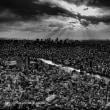 Tokyo Concrete Jungle