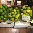 3つの柑橘果物が入荷しました!