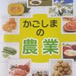 野菜の海外輸出は可能か/鹿児島での活動