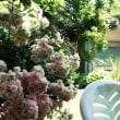 加須市麦倉の素敵なお庭