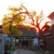 夜明けの門-山氏神社