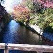紅葉を巡る4県の旅 2-1