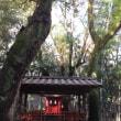 神戸〜♪生田神社☆お散歩♪