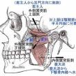 耳鳴りの針灸治療まとめ2017年版