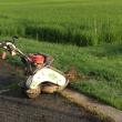 maco10 夏のイベントはやっぱり草刈り