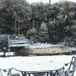 雪 大丈夫!