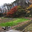 四季2018(13)紅葉・落ち葉の季節 秋田新幹線も影響受けた