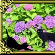 紫陽花(シヨウカ・あぢさゐ)のハナ・・・