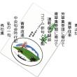 青草4号(秋号)発刊される