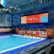 世界マスターズ水泳選手権大会参加の記録
