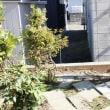 庭のブロック塀工事 13